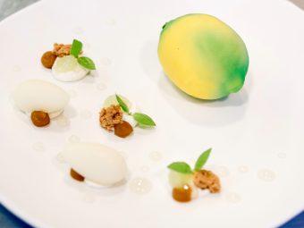 The Lemon of Julien Dugourd