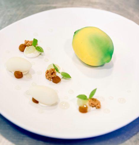 Le Citron de Julien Dugourd